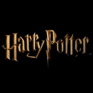 Tecidos Harry Potter